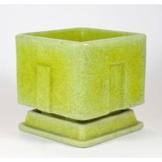 Copier cactuspot geel/groen vierkant met onderschotel